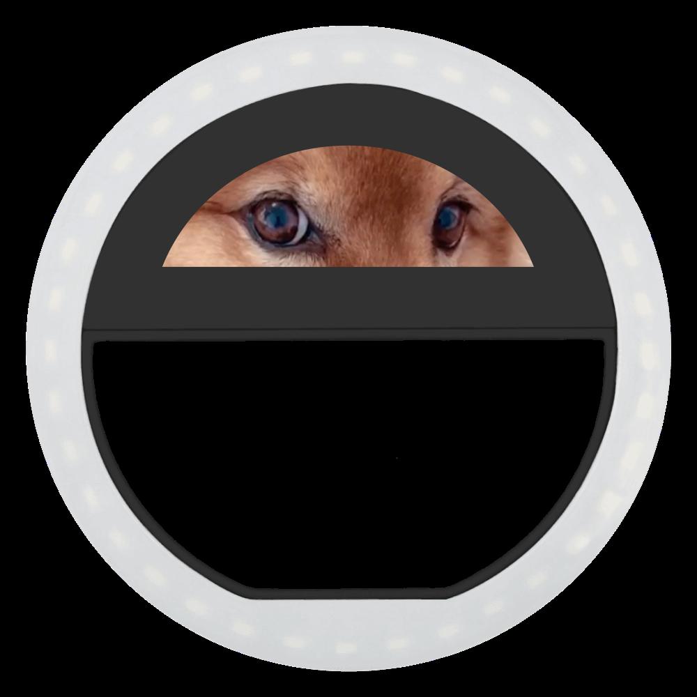 Fluffy dog♡ ビッグクリップセルフィーフラッシュライト