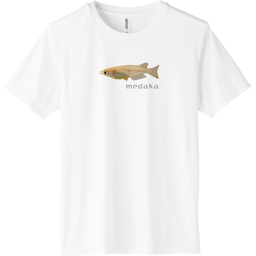 medaka_mojigray_white インターロックドライTシャツ
