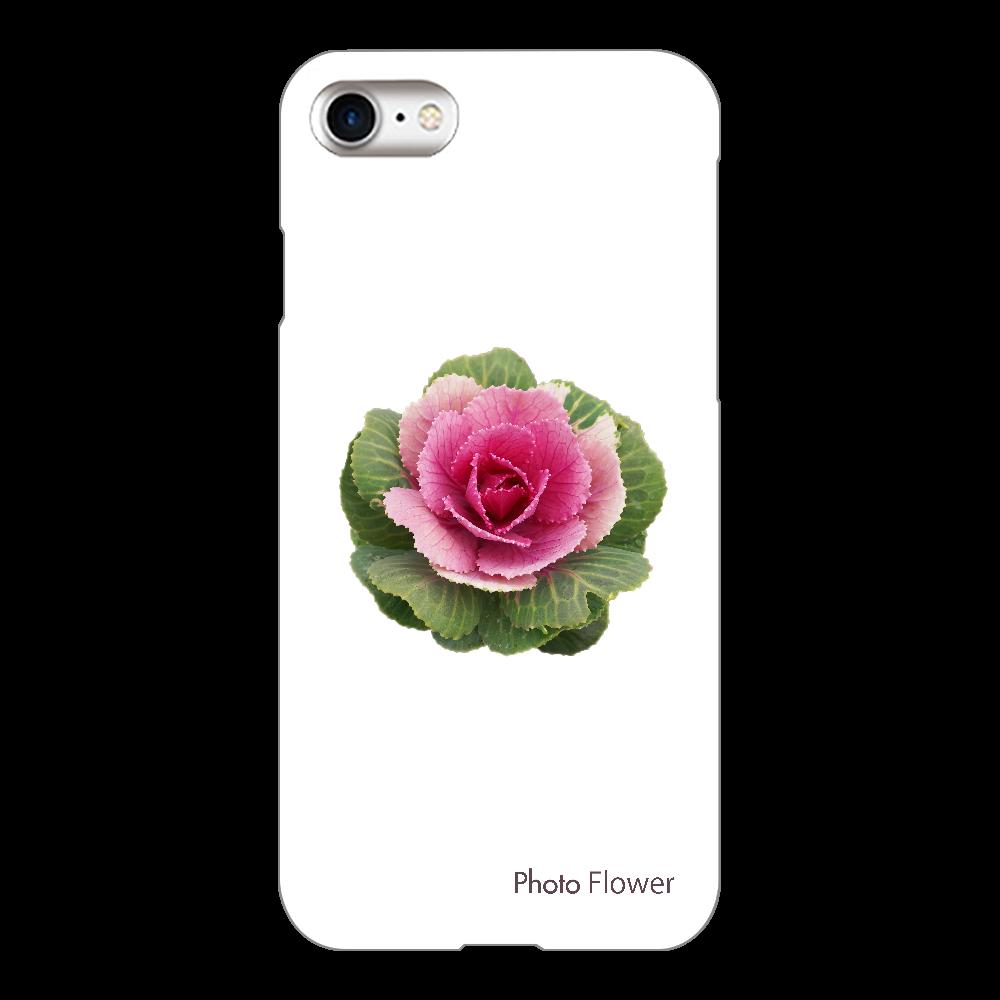 ハボタンの花 丸葉 レッド iPhone8(透明)
