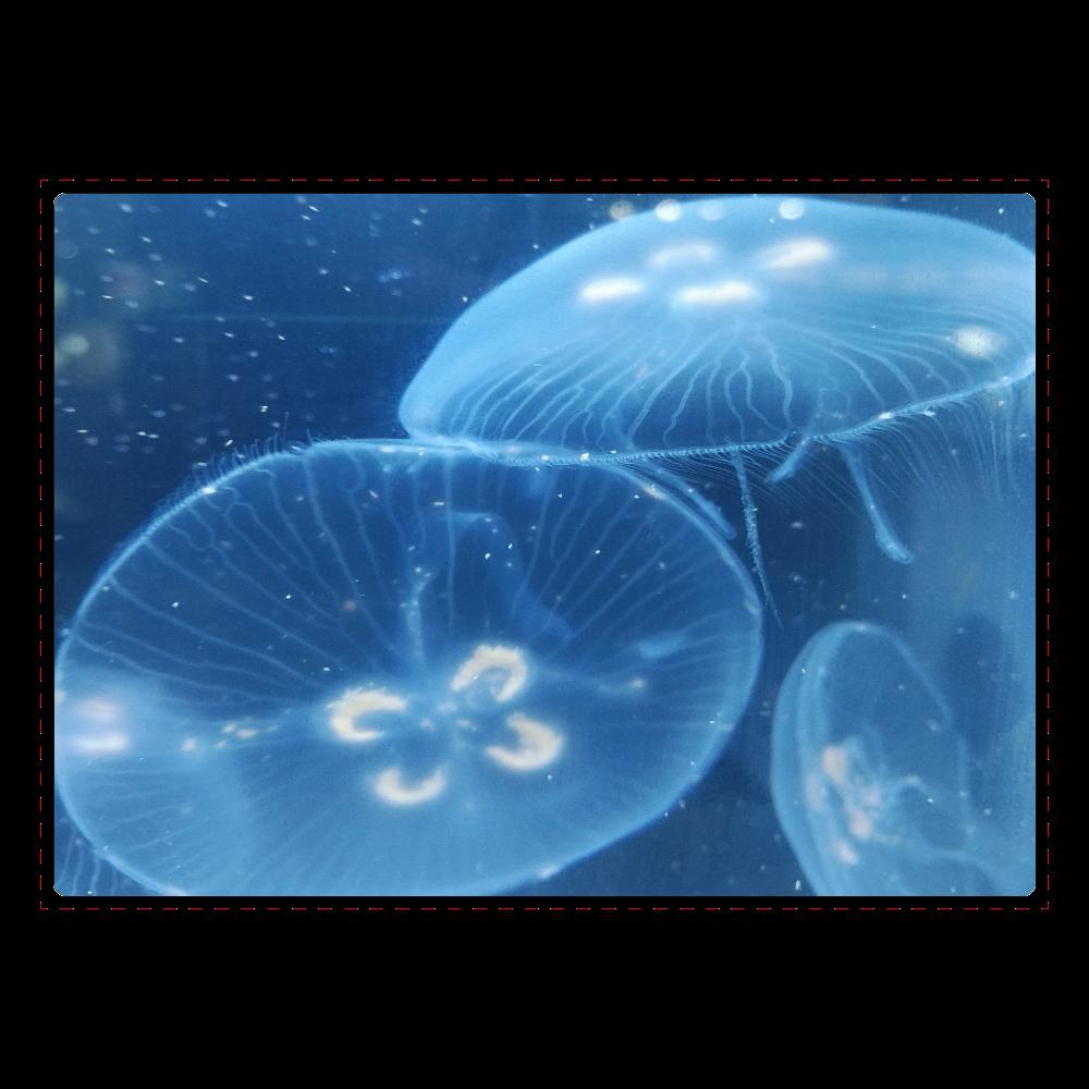 ミズクラゲ(写真)ジグソーパズル ジグソーパズル A4サイズ 104ピース