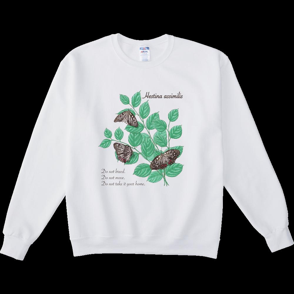 アカボシゴマダラとエノキ NUBLENDスウェットシャツ