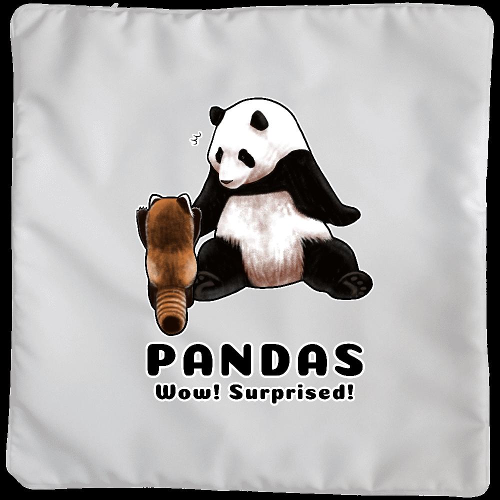 PANDAS【C】 クッション(大)